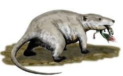 Tìm thấy dấu vết của động vật có vú trên hóa thạch của loài khủng long Mamenchisaurus