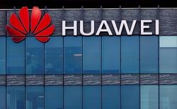 Chính phủ chưa cấm, nhà mạng Bồ Đào Nha vẫn quyết không dùng Huawei