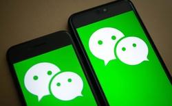 E ngại cảnh tự lấy đá ghè chân mình, chính phủ Mỹ xem xét lại lệnh cấm WeChat