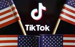 Thuộc 2 lĩnh vực tách biệt, tại sao một nhà bán lẻ như Walmart lại muốn thâu tóm TikTok?