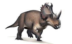 Lần đầu tiên các nhà khoa học phát hiện một con khủng long bị ung thư
