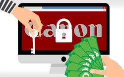 Canon bị tấn công dạng ransomware, mất cắp 10TB dữ liệu cùng hàng loạt website không hoạt động được