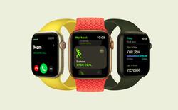 Apple ra mắt Apple Watch SE giá rẻ: Thiết kế giống Series 6, giá từ 279 USD