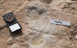 Hồ nước cạn khô trên sa mạc hé lộ một loạt dấu chân 120.000 năm tuổi của tổ tiên chúng ta