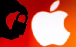 Apple bất ngờ hoãn ra mắt tính năng chặn theo dõi người dùng trên iOS 14