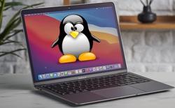 Nhờ một đối thủ cũ của Apple, máy tính Mac dùng chip M1 đã có thể chạy được Linux