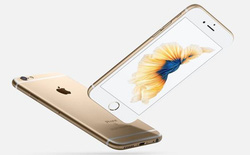 LG từ bỏ sản xuất tấm nền LCD cho iPhone