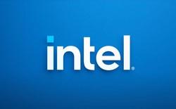 Đối thủ không đội trời chung, card đồ họa rời của Intel sẽ không hoạt động trên hệ thống của AMD