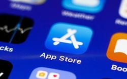 Apple bắt đầu cho phép người dùng đánh giá ứng dụng của mình trên App Store, ngay lập tức nhận bão 1 sao