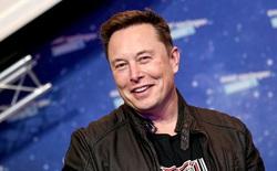 Tesla - một case study ngành xe điện mà VinFast có thể nhìn vào