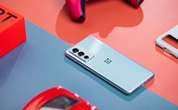 OnePlus 9RT ra mắt: Màn hình AMOLED 120Hz, Snapdragon 888, camera dùng cảm biến của OPPO Find X3, giá từ 11.6 triệu đồng