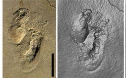 Phát hiện dấu chân người cổ xưa nhất ở đảo Crete thách thức giả thuyết tổ tiên chúng ta đến từ Châu Phi