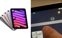 iPad Mini 6 lại dính thêm lỗi đổi màu và biến dạng trên màn hình LCD