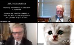 """Quên tắt filter, vị luật sư biến thành chú mèo """"cute lạc lối"""" ngay trong phiên toà"""