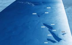 Tảng băng trôi lớn nhất từng được ghi nhận vỡ ra thành vô số mảnh, từng dài rộng cả trăm kilomet giờ chỉ còn ... vài chục kilomet