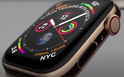 Doanh số Apple Watch trên toàn cầu vượt ngưỡng 100 triệu chiếc nhưng chỉ có 10% iPhone thực sự dùng nó