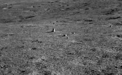 Tàu thăm dò Trung Quốc phát hiện một tảng đá kỳ lạ trên Mặt Trăng