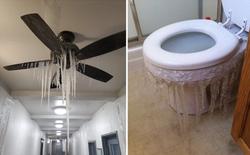 """Loạt ảnh """"siêu thực"""" về giá rét tại Texas: Bể cá hóa đá, tuyết rơi dày làm sập trần nhà"""