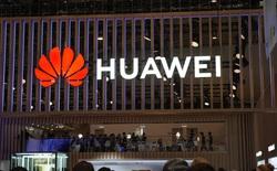 Kinh doanh smartphone ế ẩm, Huawei chuyển sang chăn lợn và đào mỏ