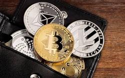 Ấn Độ có thể sẽ là quốc gia đầu tiên trên thế giới cấm sở hữu Bitcoin