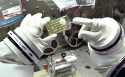 Các nhà khoa học phát hiện 3 chủng vi khuẩn chưa từng thấy trên Trạm Vũ trụ Quốc tế ISS