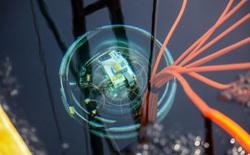 Kính viễn vọng bị nhấn chìm hàng nghìn mét dưới hồ sâu nhất thế giới để tìm 'hạt ma quỷ'