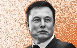 Bị Thượng nghị sỹ chỉ trích là quá giàu, Elon Musk đáp trả: 'Tôi đang tích lũy để giúp loài người'