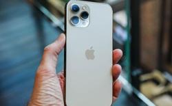 iPhone 12 mini 'ế', Apple phải bồi thường cho Samsung?