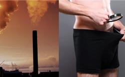 Các nhà khoa học cảnh báo 'của quý' của nam giới đang ngày một nhỏ đi, thủ phạm gây ra là loại hóa chất từ nhựa