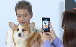 Quân A.P thử chụp ảnh cho cún cưng bằng Samsung Galaxy A72, thành quả thu về khiến nam ca sĩ bất ngờ