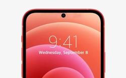 Thay tai thỏ bằng thiết kế đục lỗ trên iPhone sẽ là một quyết định cực kỳ ngớ ngẩn của Apple