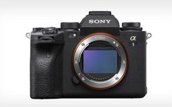 Đây là những chiếc máy ảnh không gương lật tốt nhất trong năm 2021