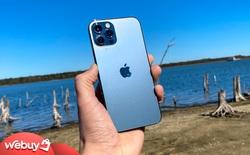 Có 41 triệu, không lên đời iPhone 12 Pro Max 512GB thì đây là những combo công nghệ bạn có thể mua