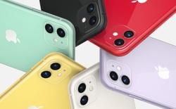 Tin vui cho người dùng iPhone 11 series: Apple sẽ hiệu chỉnh pin để khắc phục vấn đề về hiệu suất và dung lượng