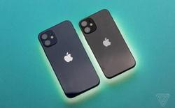 iPhone 2022 sẽ có camera 48 MP và loại bỏ phiên bản Mini