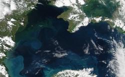 """Phát hiện vùng """"xuyên thời gian"""" ngay trên Trái Đất, còn mắc kẹt ở kỷ băng hà"""