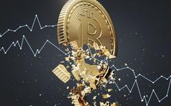 Giá Bitcoin 'rơi thẳng đứng' xuống dưới mốc 50.000 USD, nhà đầu tư bán tháo