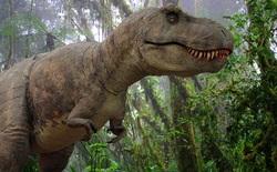 Bạn có thể không cần chạy nhanh hơn một chú T. rex - đi bộ nhanh hơn nó là đủ rồi