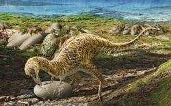 Phát hiện loài động vật hai ngón chuyên ăn cắp trứng khủng long