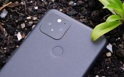 """Học tập Apple, Pixel 6 cũng sẽ dùng bộ xử lý """"nhà trồng"""" của Google"""