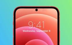 """iPhone SE 2022 sẽ hỗ trợ mạng 5G, thiết kế giống iPhone 11 trong khi iPhone SE 2023 sẽ bỏ """"tai thỏ""""?"""