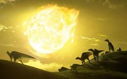 Thiên thạch từng làm loài khủng long tuyệt chủng là nguyên nhân tạo nên những cánh rừng nhiệt đới ngày nay?