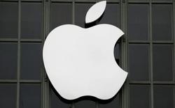 Hàng trăm công nhân nhà máy sản xuất iPhone ở Ấn Độ mắc Covid-19