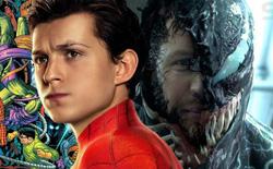 Soi kỹ trailer Venom 2 mới thấy: Liên quan mật thiết đến Spider-Man, liên kết trực tiếp đến MCU