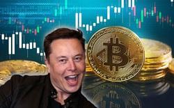 """Elon Musk lại """"lật mặt"""": Tuyên bố Tesla chưa bán Bitcoin"""