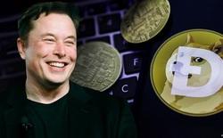 Elon Musk cố cứu Dogecoin nhưng sai cách