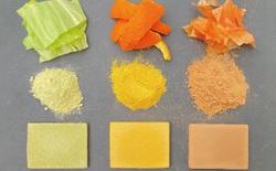 Các nhà khoa học biến rau củ dư thừa thành vật liệu xây dựng bền hơn bê tông, vẫn có thể ăn được