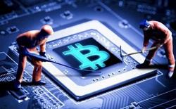 Chỉ bằng một quả táo kỹ thuật số, bạn sẽ hiểu vì sao Bitcoin giá trị đến thế