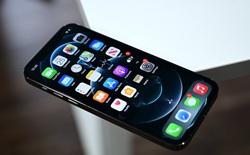 Sẽ có tới 7 phiên bản iPhone 13 mới?