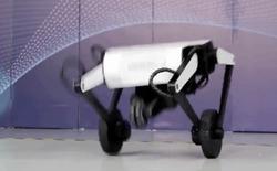 """Bằng cách lắc """"hạ bộ máy"""", con robot này có thể thực hiện những cú nhảy ngoạn mục"""